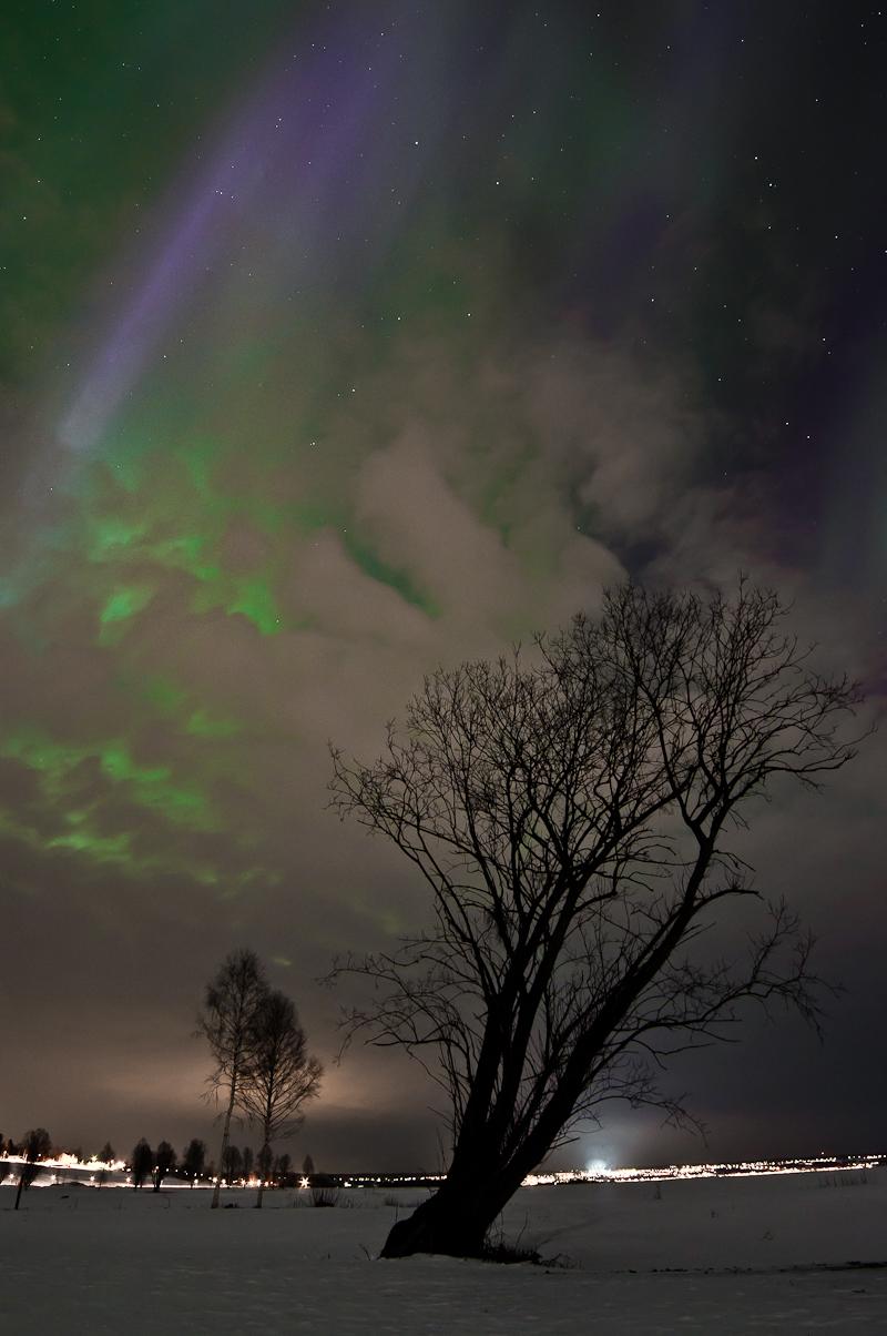 Foto: © Fredrik Karlsson