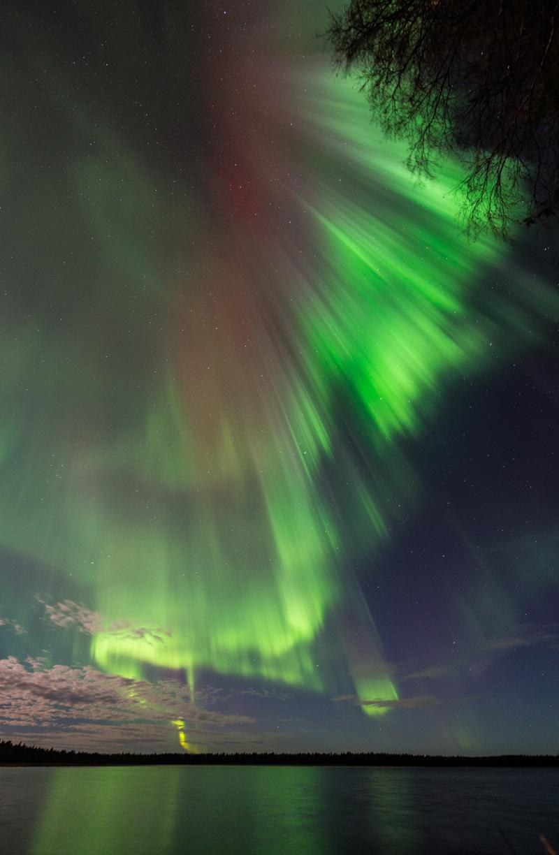 Foto: Oskar Pettersson