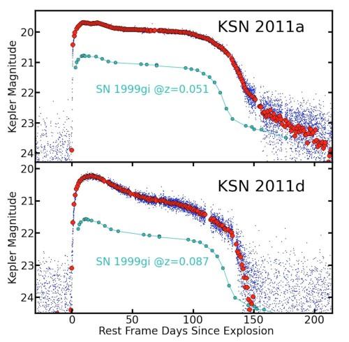 Ljuskurvorna för KSN 2011a (överst) och KSN 2011d (nederst). Åt höger i diagrammen går tiden, angiven i dygn. Uppåt i diagrammen tilltar den skenbara ljusstyrkan, här angiven i magnituder. Ju mindre tal magnituden anges till, desto ljusare är supernovan. Magnitud 20 är 400 000 gånger svagare än vad människoögat kan uppfatta, vilket beror på att supernovorna är mycket avlägsna. I absoluta mått är supernovorna, vid maximum, ca 1 miljard gånger ljusstarkare än vår sol. Lägg märke till platåerna i diagrammen! Figur: Peter Garnavich och medarbetare.