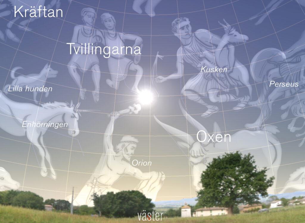 Solen står som närmast polstjärnan vid sommarsolståndet. Bild: Stellarium