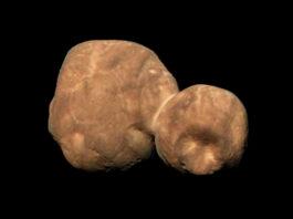 Arrokoth: Foto: NASA/JHUAPL/Jason Major (CC NC BY SA 2.0)