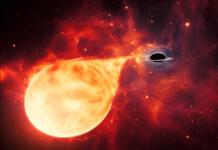 Medeltungt svart hål och stjärna: Illustration ESA/Hubble, M. Kornmesser