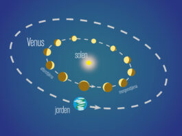 Venus faser Bild: Populär Astronomi
